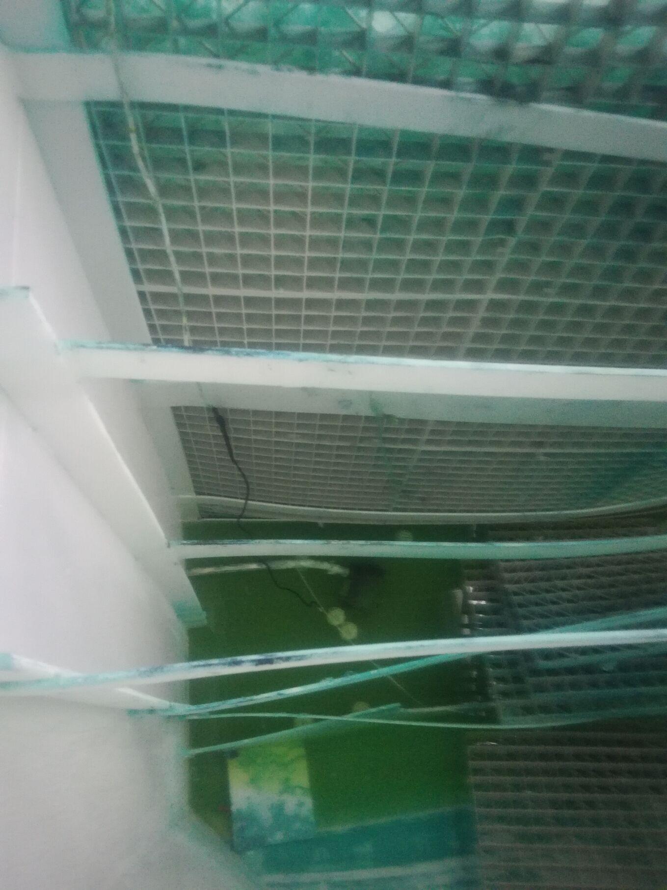 造粒厂贝博|唯一授权处理设备 塑料颗粒厂贝博|唯一授权处理